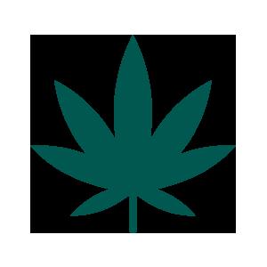 Cannabis Industry Career Recruiters