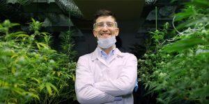 cannabis recruiter blog